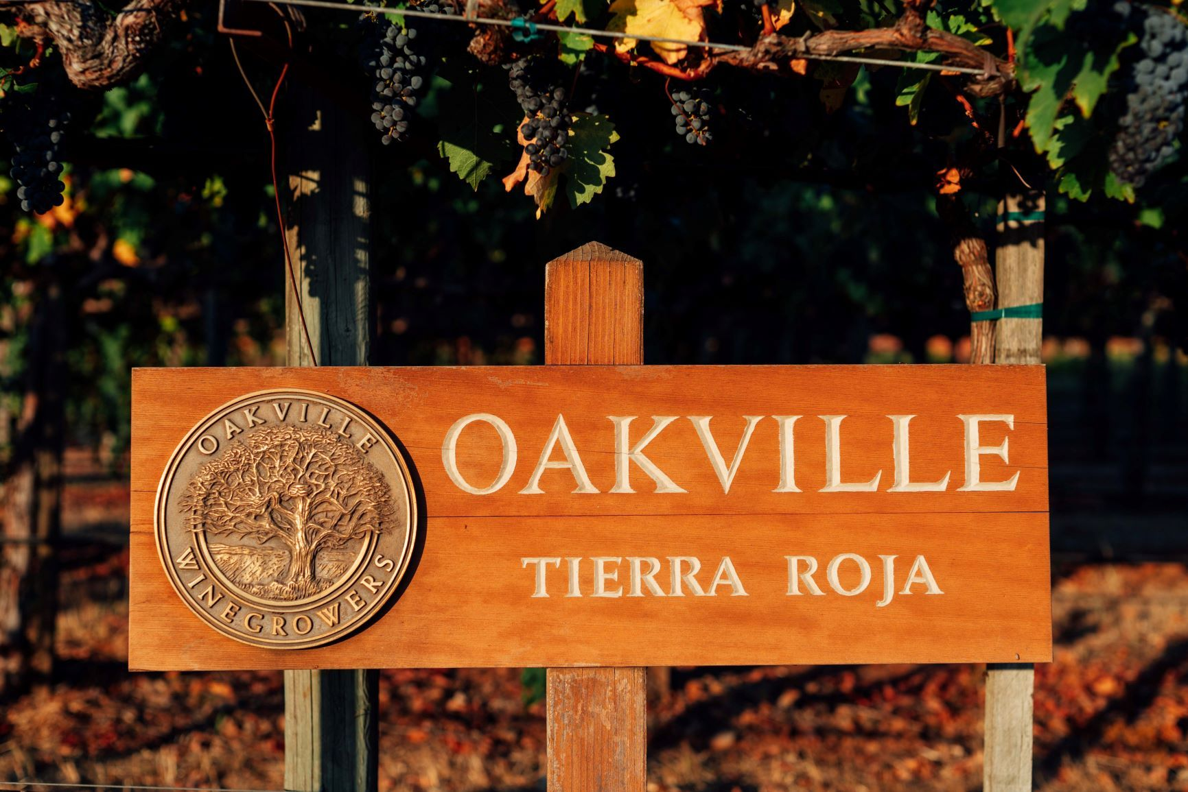 Tierra Roja Oakville Sign